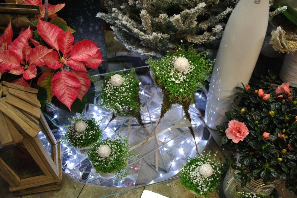 Fleuriste rueil malmaison ma boutique fleurs et for Adresse fleuriste